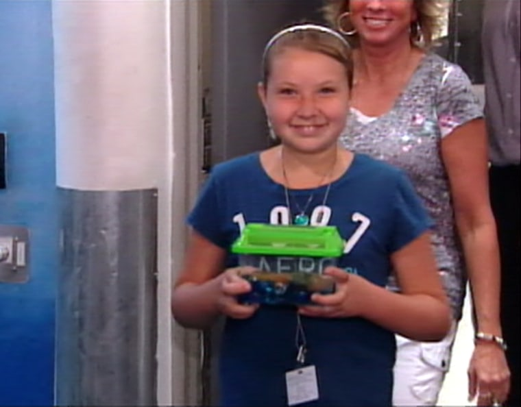 Carley Helm, 10, was all smiles after being reunited with her turtle, Neytiri — but it was a different story when the pet wound up in a trash can after being ordered off a plane.