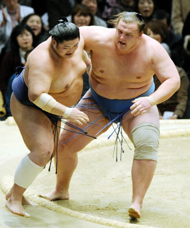 Image: Sumo wrestlers file