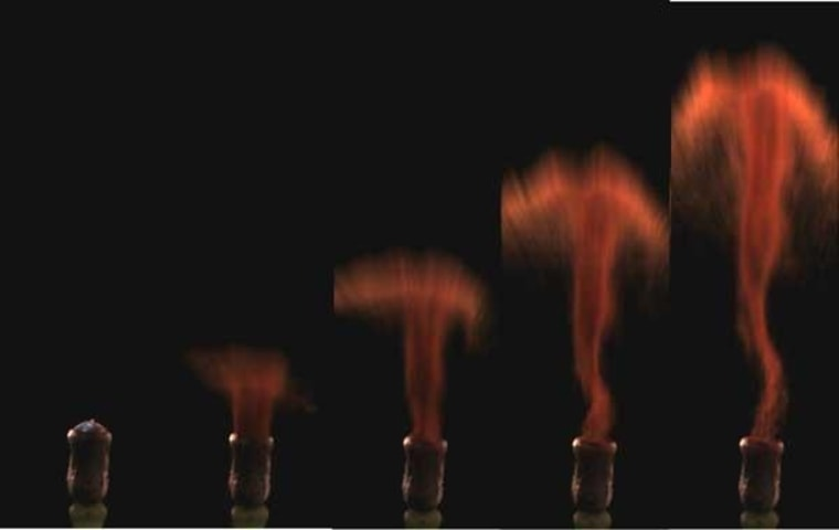 Image: Moss air gun shoots spores