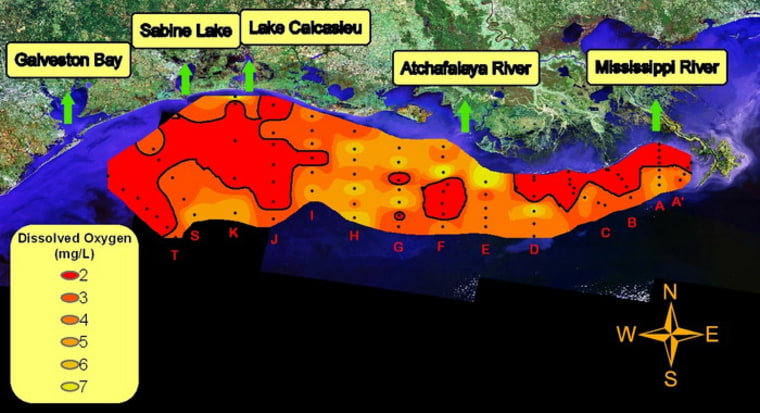 The areas in red arethe most oxygen-depleted areas detected inthe Gulf from July 24 to Aug. 2, 2010.
