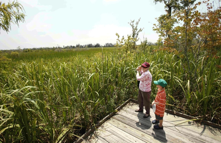 Image: Rose Belsom, 62, of Marrero, La., and her grandson Peyton Belsom, 7, takes pictures at the edge of preserved swamp outside Lafitte, La.
