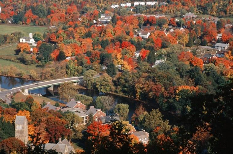 Image: Yankee foliage