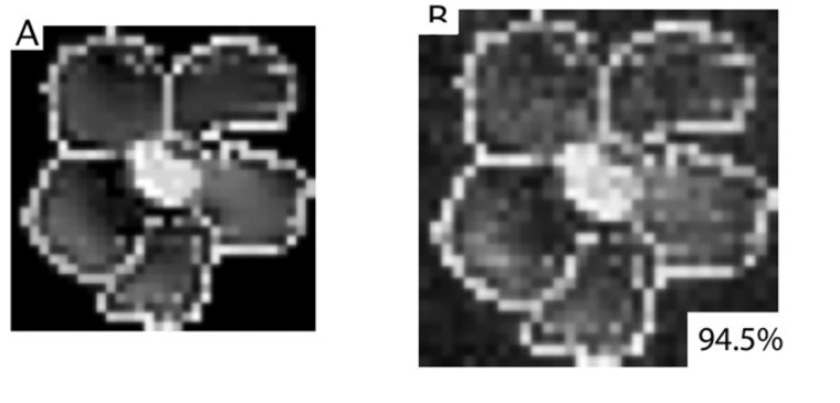 Image: Alternative to X-Rays