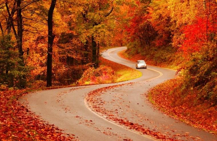 Image:  Blue Ridge Parkway
