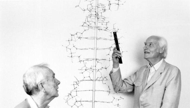Image: Francis Crick and James Watson