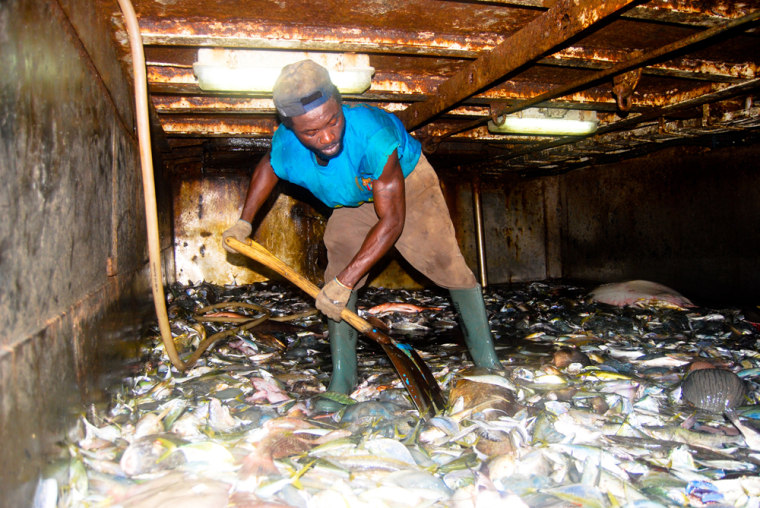 A fisherman works below deck on board the Aspari-3, which was caught fishing illegally in Sierra Leonean waters in November 2008.