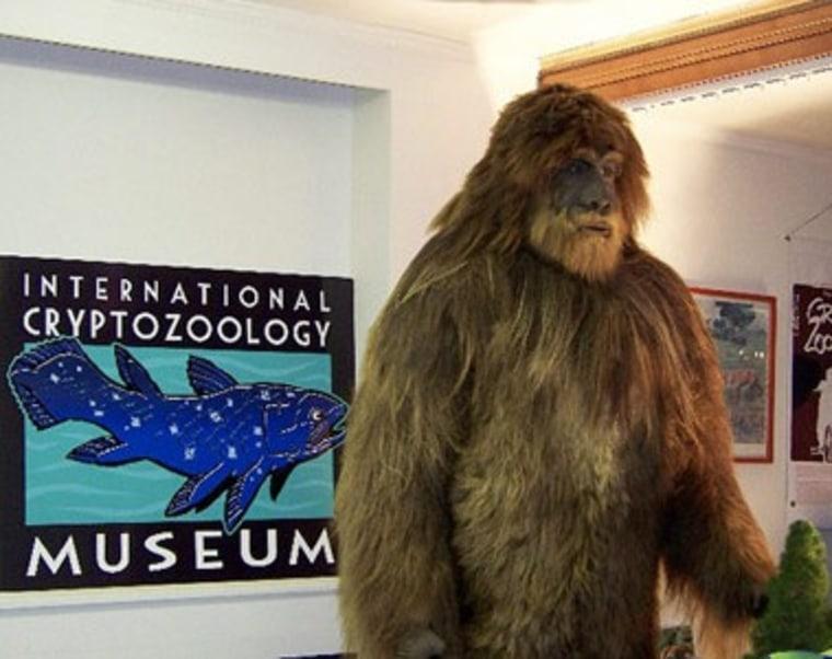 Image: Cryptozoology Museum