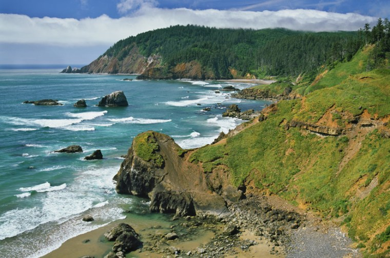 Image: Southern portion of coast along Oregon and California