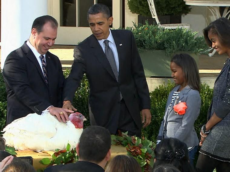Image: Obama pardons a turkey