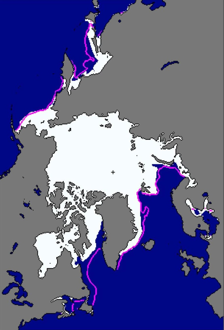 Image: Map of sea ice