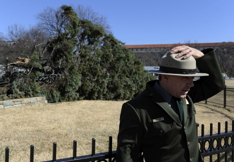 Image: National Park Service spokesman holds onto his hat in the strong winds that felled the National Christmas Tree near the White House in Washington