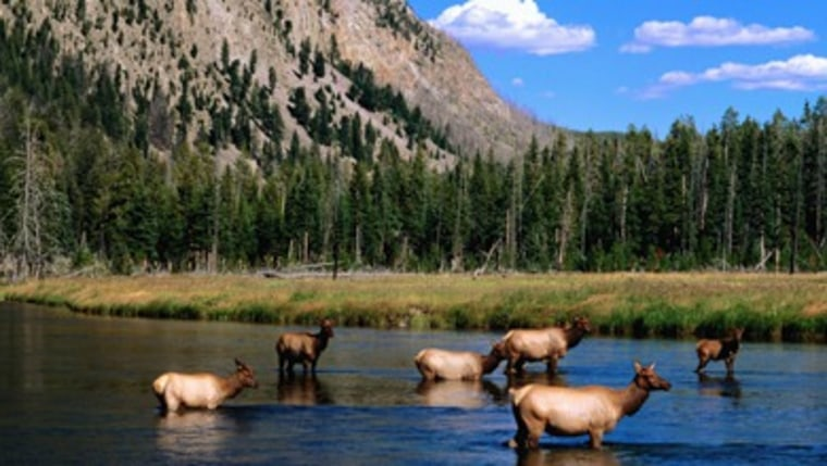 Yellowstone National Park covers 2.2 million acres in Idaho, Montana and Wyoming. Though it's one of America's most visited national parks, Yellowstone still offers some of the best — if not the best — wilderness experiences in the country.