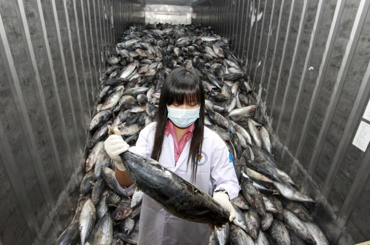 Image: An official takes a sample from a shipment of frozen fish imported from Japan to test for for possible radiation contamination at Ladkrabang customs in Bangkok
