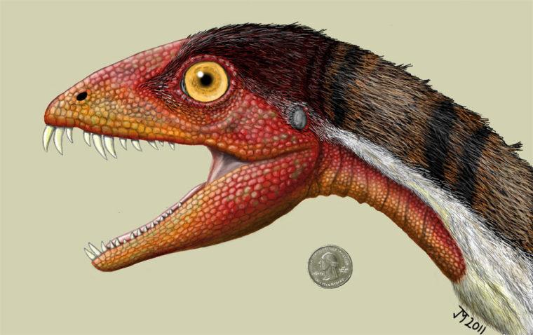 Imager: Daemonosaurus