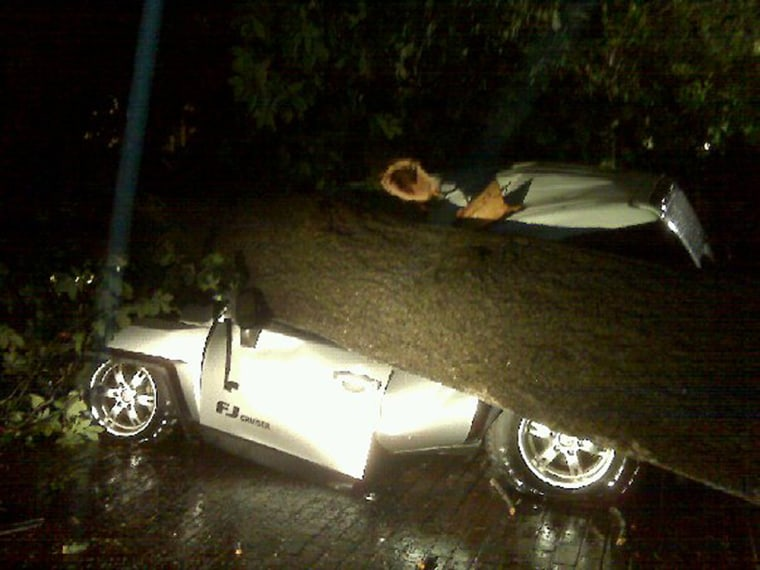 An SUV belonging to South Carolina Governor Nikki Haley's husband Michael was destroyed by powerful storms.