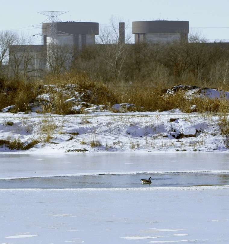Image: Bob Scamen's pond in Braidwood, Ill. within view of the Braidwood Nuclear Power Station