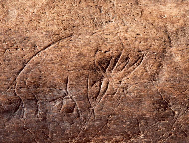 This sketch of a mammoth inscribed on mammoth bone may be the oldest known American art. It was found at a site in Florida.