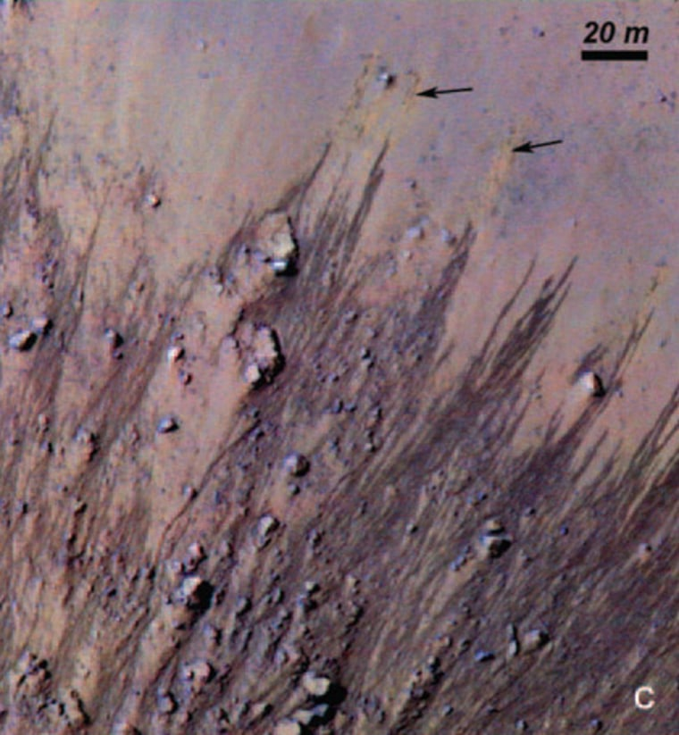 These slopes carved in Horowitz Crater on Mars suggest that the Red Planet might host liquid water. Colors have been enhanced to show the subtle differences, including light orange streaks (black arrows) in the upper right that may mark faded lines.
