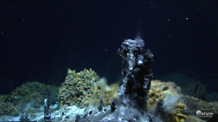 A black smoker chimney formed where superheated energy-laden seawater gushes out into cold deep-sea water. Communities of symbiotic organisms live around them.