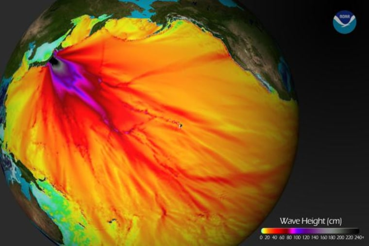 This image shows model projections of wave heights from the March 11 Japan quake.