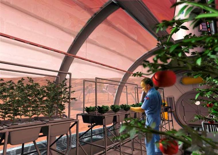 Image: Rendering of astronaut growing food inside greenhouse