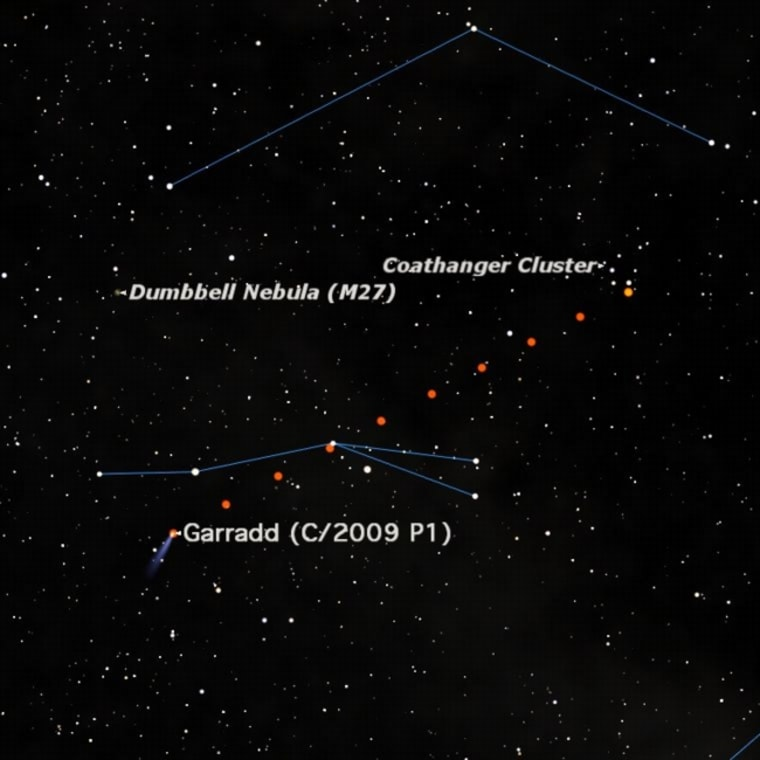 Comet Garradd can be seen right now with binoculars in the constellation Sagitta.