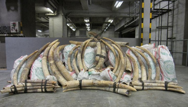 Image: Smuggled ivory seized in Hong Kong