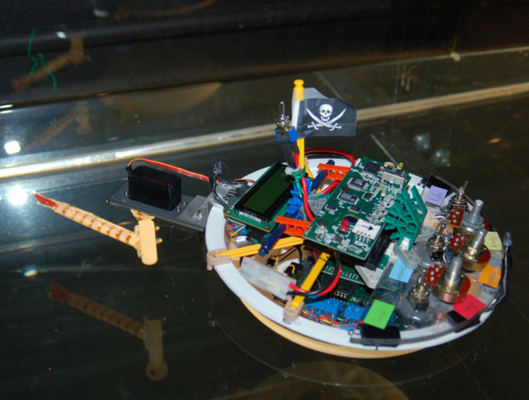 A modified autonomous Tadro4 robot helps scientists understand how the number of vertebrae impacts swimming performance.