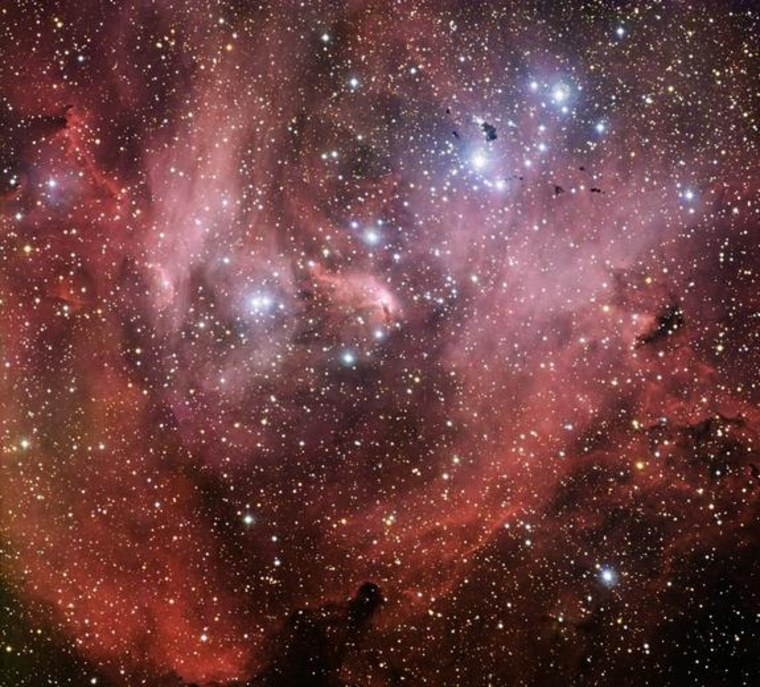 This new image from the Wide Field Imager on the MPG/ESO 2.2-metre telescope shows the Running Chicken Nebula, a cloud of gas and newborn stars that lies about 6,500 light-years away from us in the constellation of Centaurus (The Centaur).