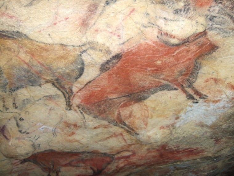 A painted bison on the ceiling of Altamira cave in Spain. The cave is closed to the public because human incursions have damaged the 14,000-year-old paintings.