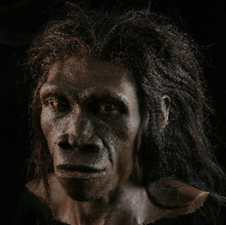 A reconstruction of a Homo erectus female (based on fossil ER 3733) by paleoartist John Gurche, part of the Smithsonian National Museum of Natural History's Human Origins Program.