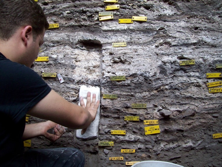 Researcher Christopher Miller samples sediments containing the ancient mattresses.