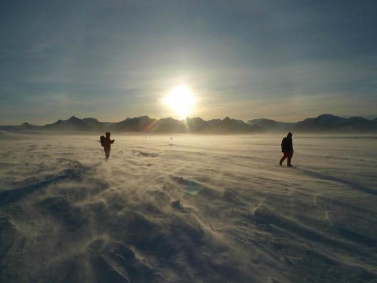Image: The ice above Lake Ellsworth