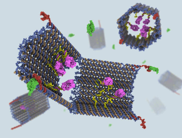 A digital rendering of DNA nano-robots bearing payloads to precisely attack cancer cells.