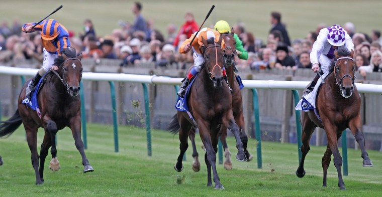 Parish Hall (far right) wins the Group 1 Dubai Dewhurst Stakes at Newmarket in October 2011. Northern Dancer is prominent on both the sire and dam side of his pedigree.