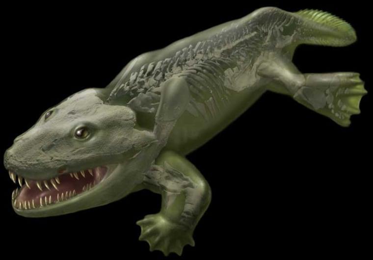 Image: Fleshed-out reconstruction of the early tetrapod Ichthyostega