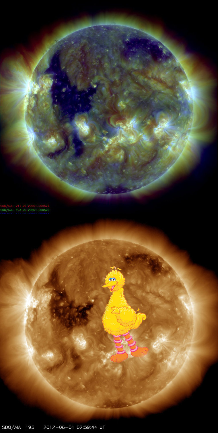 """This photo from NASA's Solar Dynamics Observatory (SDO) spacecraft, snapped on Fiday, shows a feature that looks like Big Bird on the surface of the sun (SDO staff added the picture of the """"Sesame Street"""" character). The feature is actually a coronal hole, a dark region in the sun's upper atmosphere."""