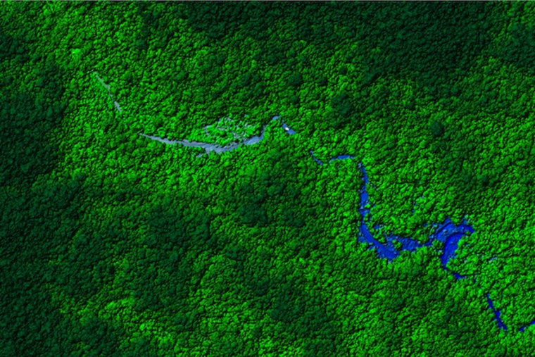 A view of the Honduras rain forest. Laser mapping scientists flew over a remote part of the forest and discovered what appear to be ruins. The next step is to visit the ruins in person to determine their age.