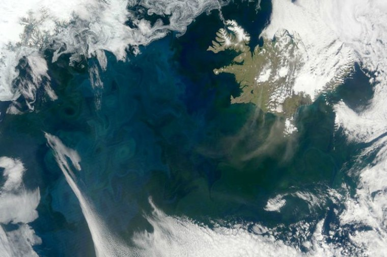 Plankton blooms in the North Atlantic in this photo taken from spacethis past spring.