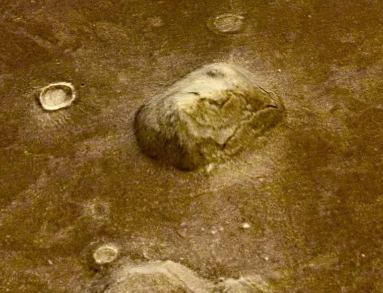 Image: Face on Mars