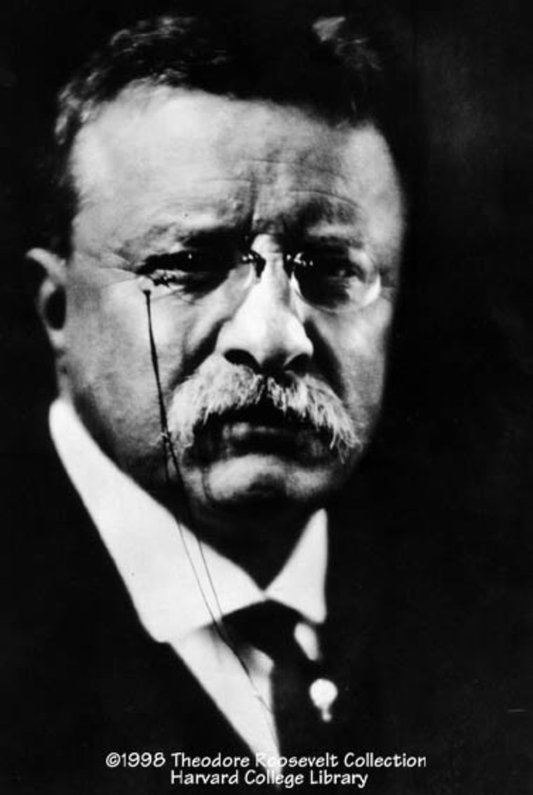 "Theodore Roosevelt, shown here in 1915, received the highest boldness scores. His motto: ""Speak softly and carry a big stick."""