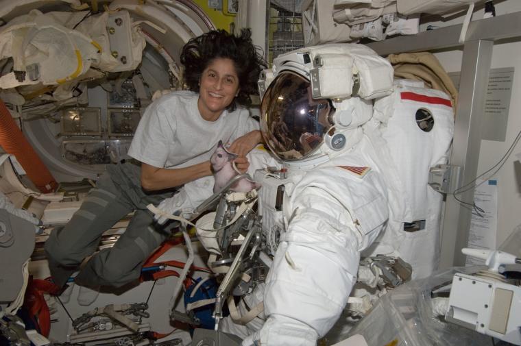 astronaut Sunita Williams poses with her spacesuit