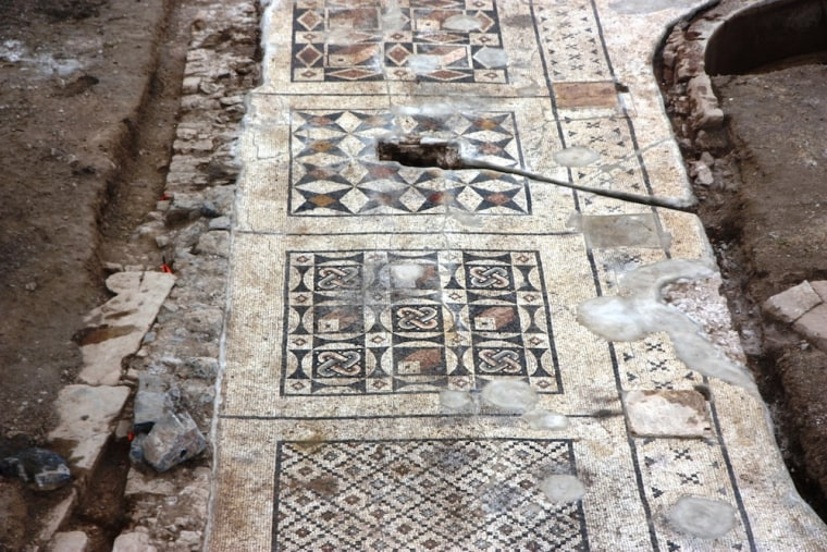 Each section of a poolside mosaic unearthed in southern Turkey features its own geometric design.