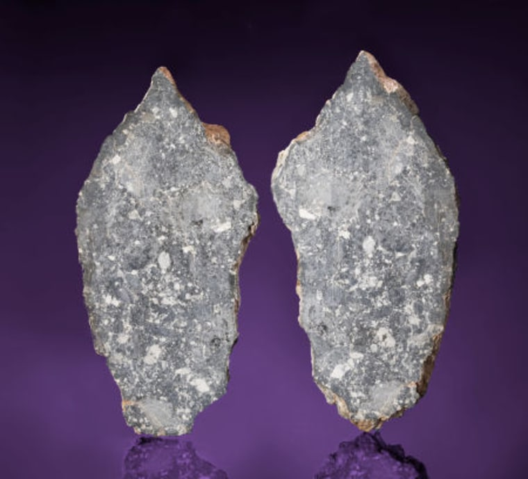 A moon rock for sale by Heritage Auctions came to Earth as a meteorite. The specimen,bisected to show the interior,is expected to sell for upward of $380,000.