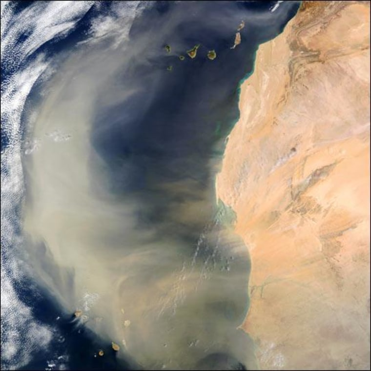 A large, swirling mass of dust blowing from the Western Sahara into the Atlantic Ocean on Sept. 4, 2005. Dust from Africa helped form Bermuda's red soil.