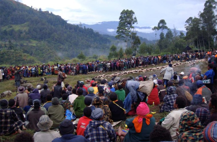 Around 1850, Enga leaders established a compensation system to quash postwar violence. In a large, public ceremony (shown here), individuals handed over live pigs and other valuables to their enemies as compensation for deaths.