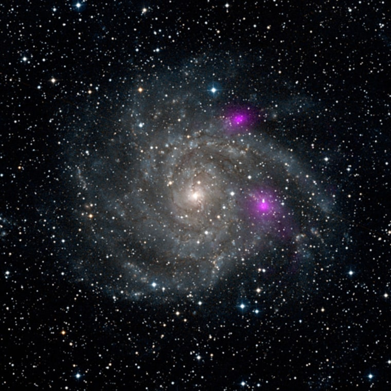 This new view of spiral galaxy IC 342, also known as Caldwell 5, includes data from NASA's Nuclear Spectroscopic Telescope Array, or NuSTAR. High-energy X-ray data from NuSTAR have been translated to the color magenta, and superimposed on a visible-light view highlighting the galaxy and its star-studded arms.
