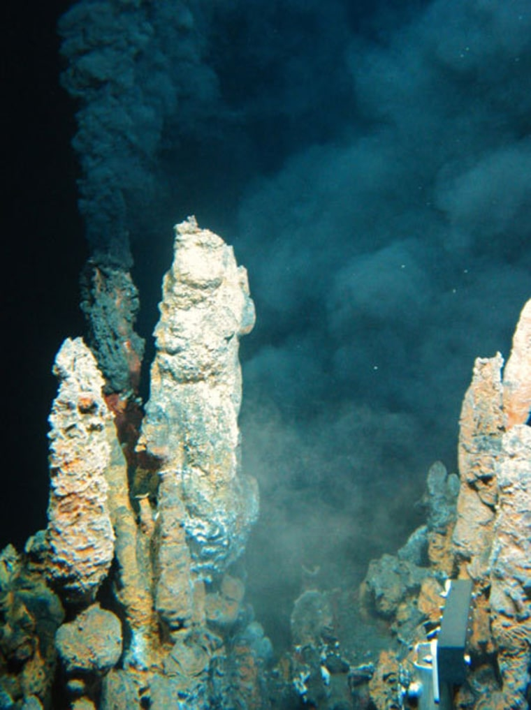 Life may have gotten started in hydrothermal vents where acidic seawater met with bitter alkaline fluid from the Earth's crust.