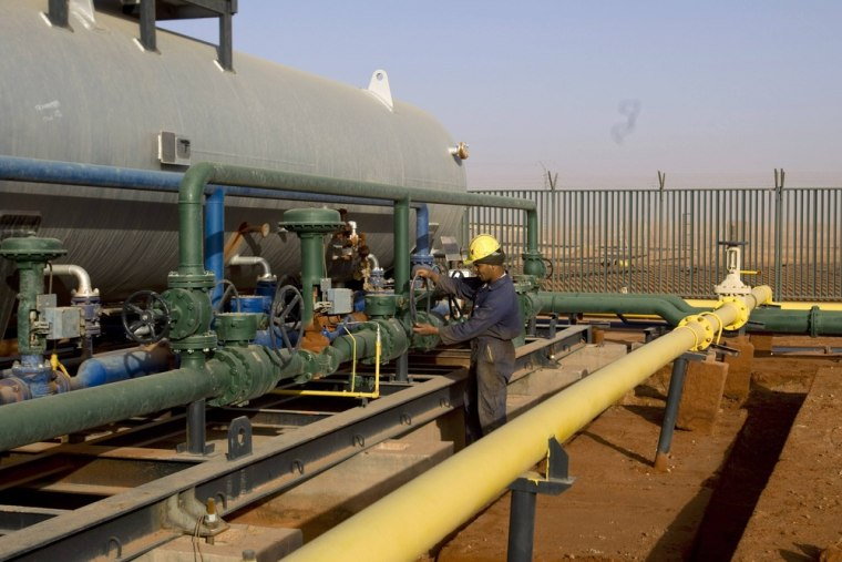 Image: A worker is seen at the Zarzaitine gas field in In Amenas, 1,600 km southeast of Algiers