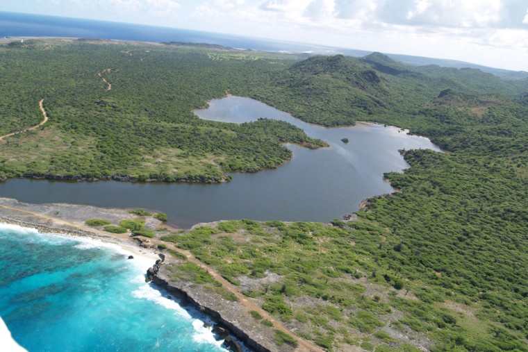 A coastal lagoon on the Caribbean island of Bonaire.